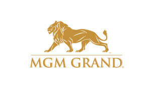 Amy Weis Voice Overs mgm Logo